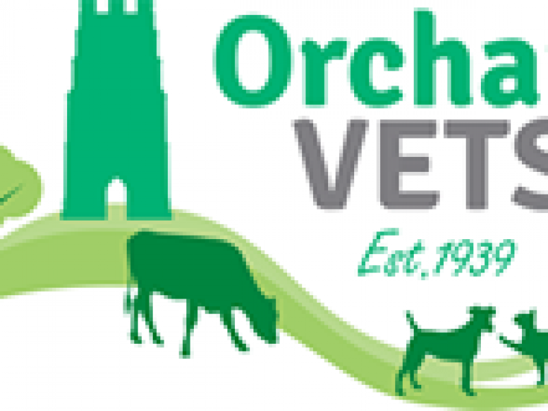 logo-orchard-vets